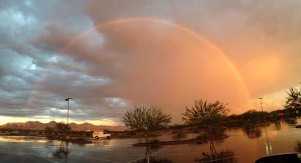 This was the most beautiful rainbow I saw in the parking lot, the day I turned in my manuscript for Flame Tree Road